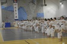 <h5>Legendy karate tradycyjnego w Niepołomicach</h5><p>Pod koniec kwietnia legendarni instruktorzy i mistrzowie karate tradycyjnego trenowali przez 4 dni w Niepołomicach podczas międzynarodowego zgrupowania, zorganizowanego przez niepołomicka AKT. Treningi prowadził sensei Avi Rokah 7 Dan (USA) – wieloletni student i asystent Senseia Hidetaki Nishiyamy.</p>