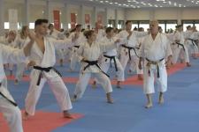 <h5>Seminarium z senseiem Włodzimierzem Kwiecińskim</h5><p>21 września zorganizowaliśmy w Dojo Stara Wieś seminarium z senseiem Włodzimierzem Kwiecińskim. Wzięło w nim udział blisko 200 karateków z kilkunastu klubów w Polsce. </p>